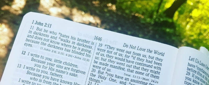Apostolic DNA: The Word — Apostolic Christ-Followers Series, No. 8 (Podcast Minisode #32)