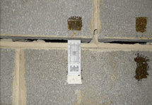Foundation Basement Wall Cracks - Horizontal - These types of cracks are caused by pressure and can take the form of hydrostatic pressure or expansive soils. Water or soil pushes against your foundation walls, creating areas of weakness. Over time you'll start to notice horizontal cracks and eventually bowed walls.