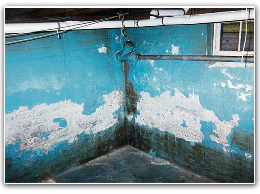 Coatings are not a good option simply because they don't stay on the wall for a very long time. This is because the water and water vapor are already through the wall. When they begin to peel and flake, the walls look worse than it did in the first place.