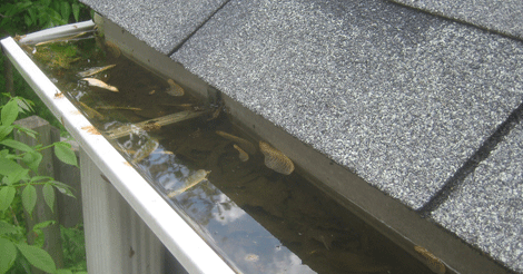 How to Fix Drainage Problems: Clogged Gutters