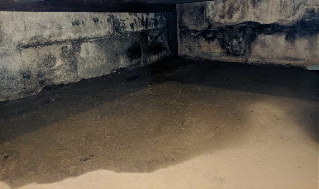 avoid basement humidity
