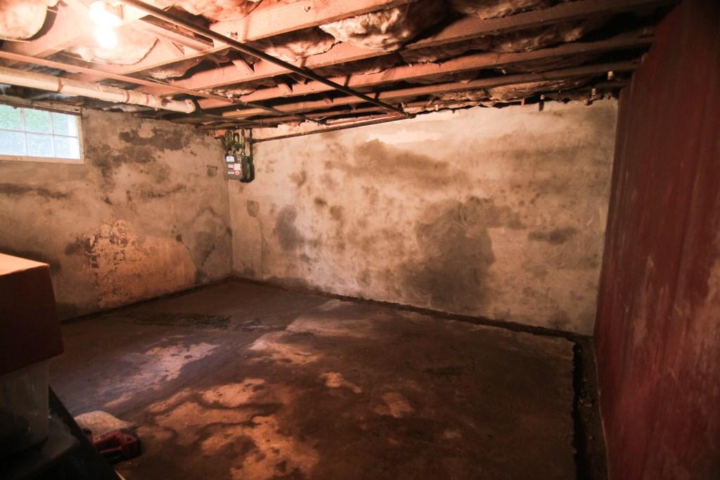 moldy basement water problems