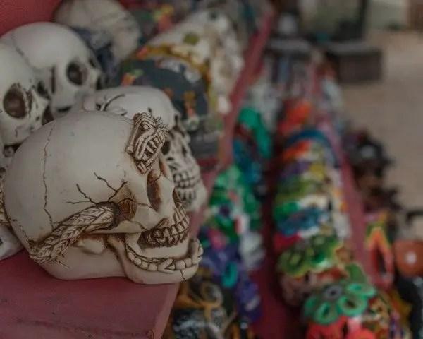 skulls aligned on a table at a souvenir shop
