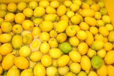 lemons-811419_640