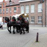 huifkar-met-paarden