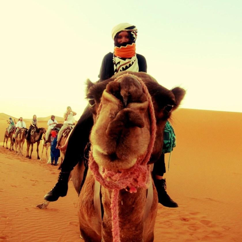 KO-Ride a camel like a badass 1-Jetsetterproblems