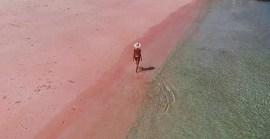 Pink-Beach, Komodo, Indonesia