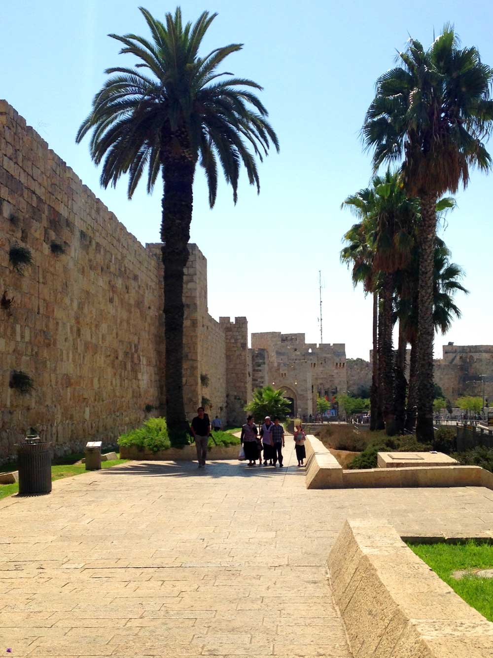 Palm trees and Jerusalem-walls