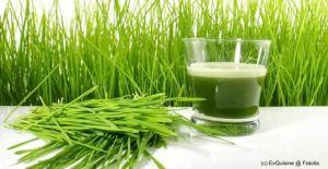 Die besten Weizengras Pulver im Test & Vergleich