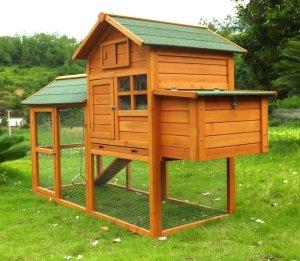 Maximale Anzahl der Hühner im Hühnerkäfig im Test