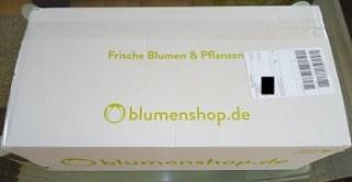Lieferung von blumenshop.de im Test