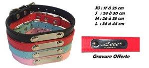 Collier simili cuir pour Chien / Chat – Gravure offerte (nom et telephone) (XS, Rouge) – Produit Français