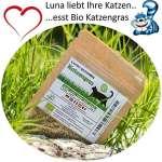 Graines d'herbe chat naturelles Lunas ♥ – 1 sachet avec mélange de graines 30g pour environ 15 pots d'herbe à chat prête à l'emploi dans un sac refermable