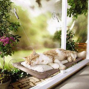 50ibs Cat Window perchoirs Lit pour Animal Domestique Hamac Perchoir Coussin Sunshine à Suspendre à Assise