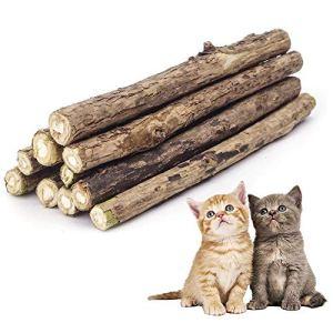 ✮GARANTIE A VIE✮-Colonel Cook®- Matatabi lot de 10 ✮✮Marque Française✮✮-cataire/catnip bio naturel pour protection soins dentaires- herbe a chat (actinidia polygama) goût menthe lutte contre la mauvaise haleine-jouet chats sous forme de batons à mâchonner