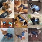 DOGGYZSTYLE Gilets pour Animal Domestique Chien Veste en Jean Capuche Chiot Veste pour Petits Chiens de Taille Moyenne, S, Bleu