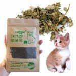 Eighty Lot de 5 pièces pour chat de qualité supérieure 10 g – Pour chat 100 % naturel et folle – Pour chat – Pour excercice – 10 g – Saveur menthol