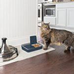 PetSafe – Distributeur Automatique de Croquettes et Nourriture Digital pour Chat et Chien, 2 Repas Programmables (355ml), Sans BPA, Ecran Digital, Minuterie
