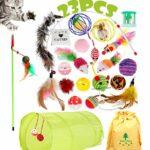 Actualisé 23 pièces Jouets Chat, Jouets à l'herbe à Chat, Jouet pour Chat Animaux Domestiques Toys pour Chat Chaton Minou, Jouet De Boule De Chat Tunnel Chat Jeu pour Chaton
