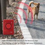 Sunbaby Ultraschall-Hundasordobßer Roteur Multifonctionnel Antibell-Huntdestropfen mit LED-Licht