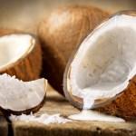 Bien-être : Les bienfaits de la noix de coco pour les femmes enceintes