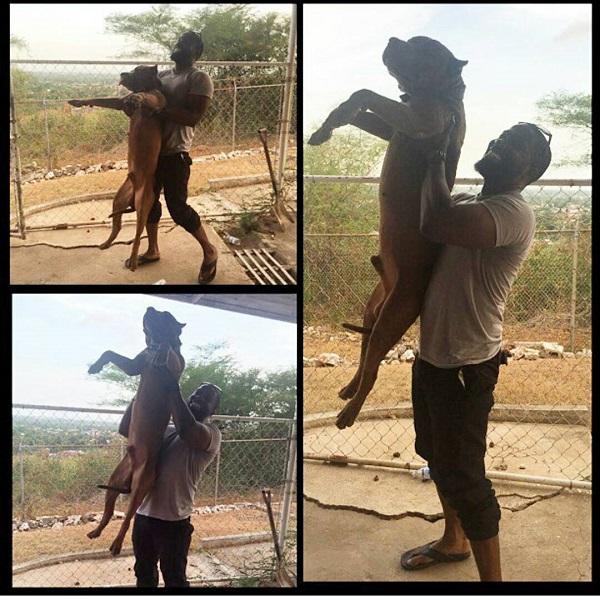 the lion king challenge jewanda 9