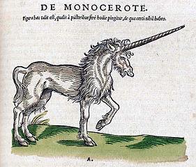 unicorn in Historiae Amimalium
