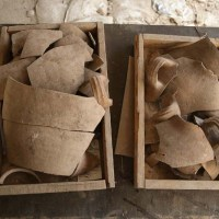 They Were Here on Tisha B'Av: New Evidence of Babylonian Destruction Discovered in City of David
