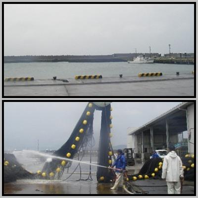 2012.6.6平塚新港