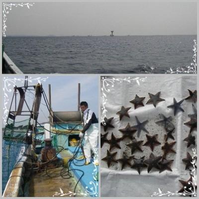 海底耕耘5