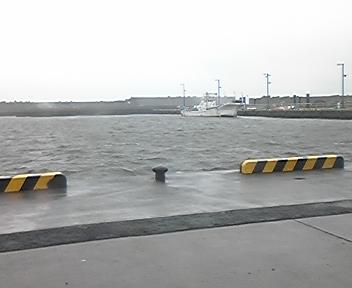 2008年1月漁港の様子