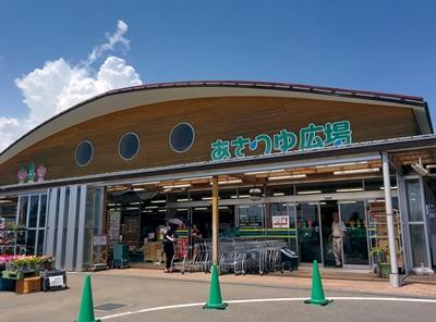 JA湘南あさつゆ広場へ定置網朝どれ鮮魚出荷。今日はアオアジ、ウルメイワシ中心ですよ~
