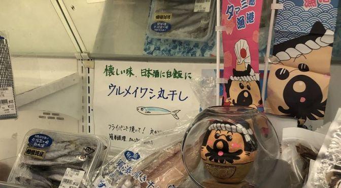 今日も定置網「日海丸」水揚げ量が少なく、あさつゆ広場への朝どれ鮮魚出荷はお休み。「須賀湊の開き干し」出荷中です!
