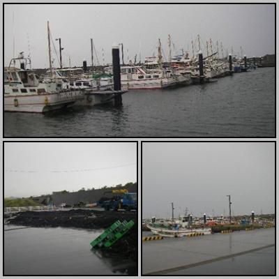 2012.8.14新港の様子