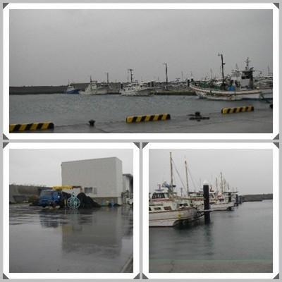 2013.2.6平塚新港