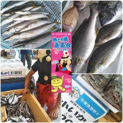 200190622OSC湘南シティ地魚直売会