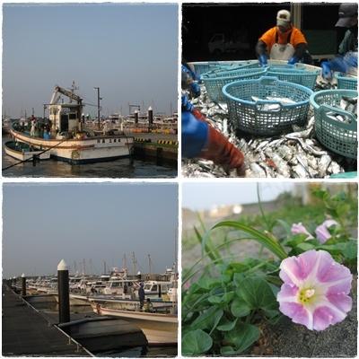 平塚漁港周辺の風景