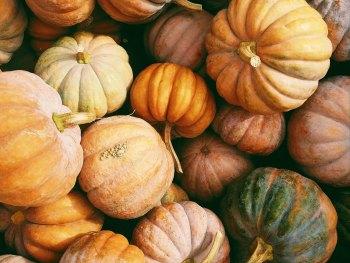 Octoberfest – October 31