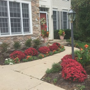 Fall Planting and Landscaping