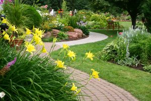 How To Improve Your Landscape This Spring
