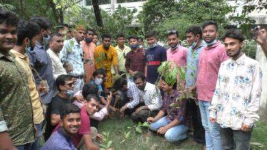Photo of ঝিনাইদহে ছাত্রলীগের বৃক্ষরোপন কর্মসূচী