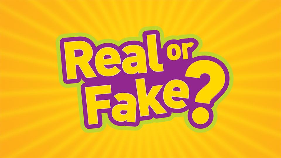 RealorFake-LoRes
