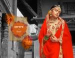 saroj sarara beautiful fancy collection of sarees at reasonable rate