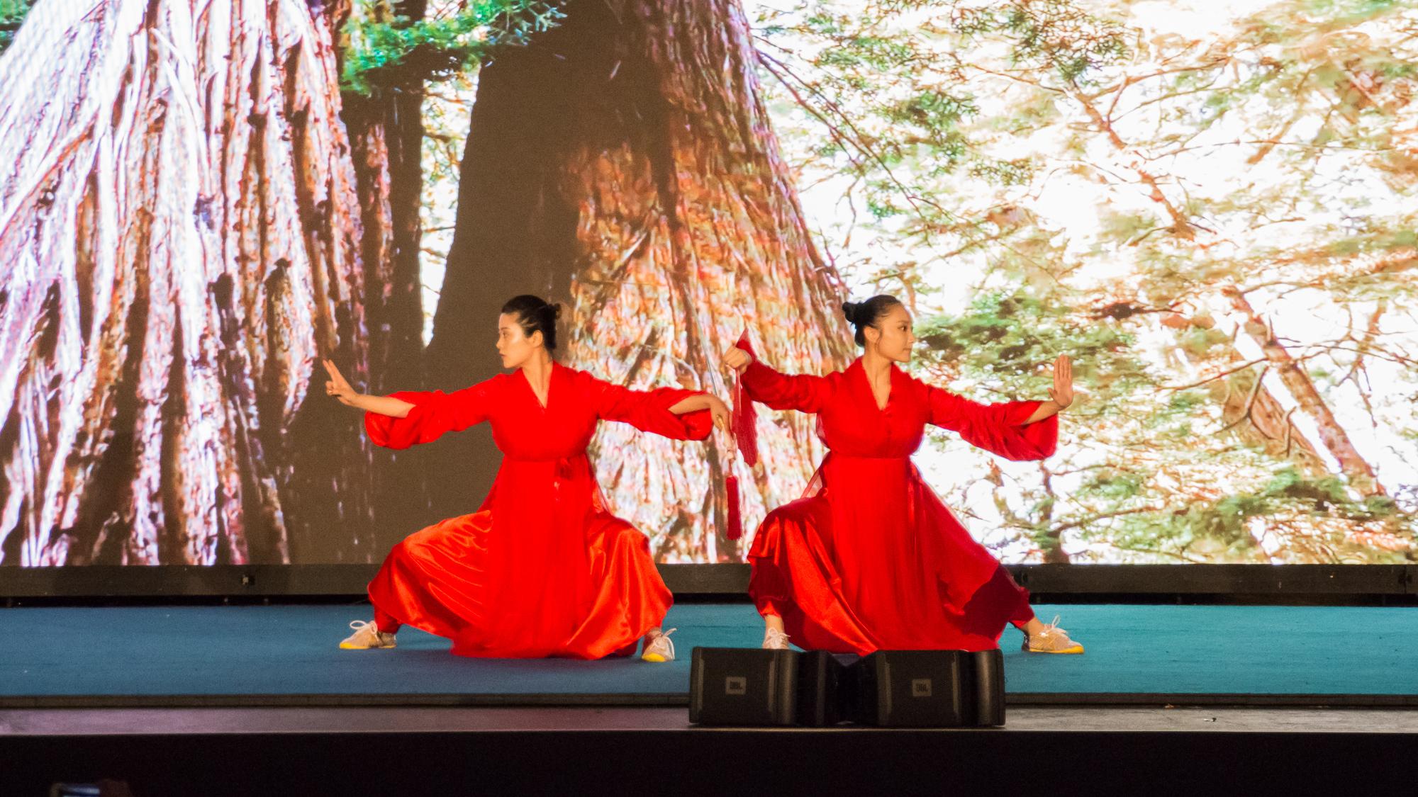 UN_Wushu_Performance_2017-29