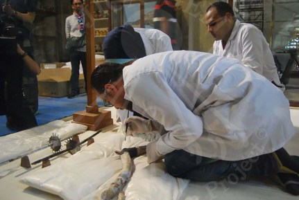 Packing carefully chariot parts in Egyptian Museum