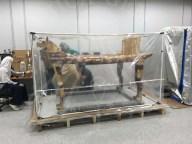 Tutankhamun's ritual bed in fumigation lab