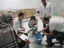 Egyptian and Japanese experts discussing the materials to be used for the First Aid