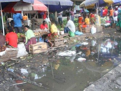 Dirty vegetables pose health risk in Dar es Salaam