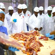 meat industry in Tanzania