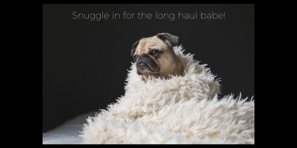 """<img src=""""puppy.jpg"""" alt=""""puppy snuggled in blanket with text"""">"""